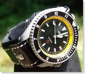 1185725879 medium thumbSeiko SKX007J Divers 200m review