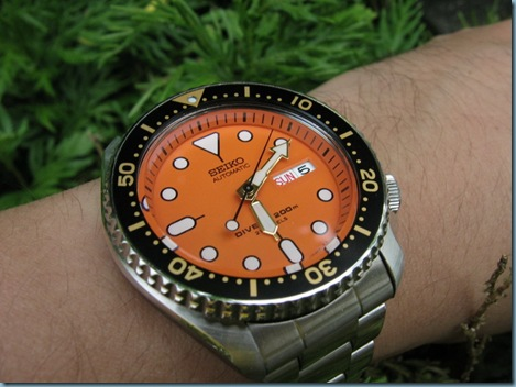 SKX011J on my wrist