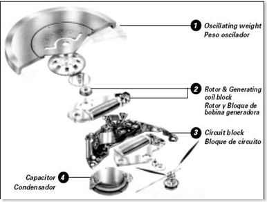 an exploded-view of an early kinetic movement (note that